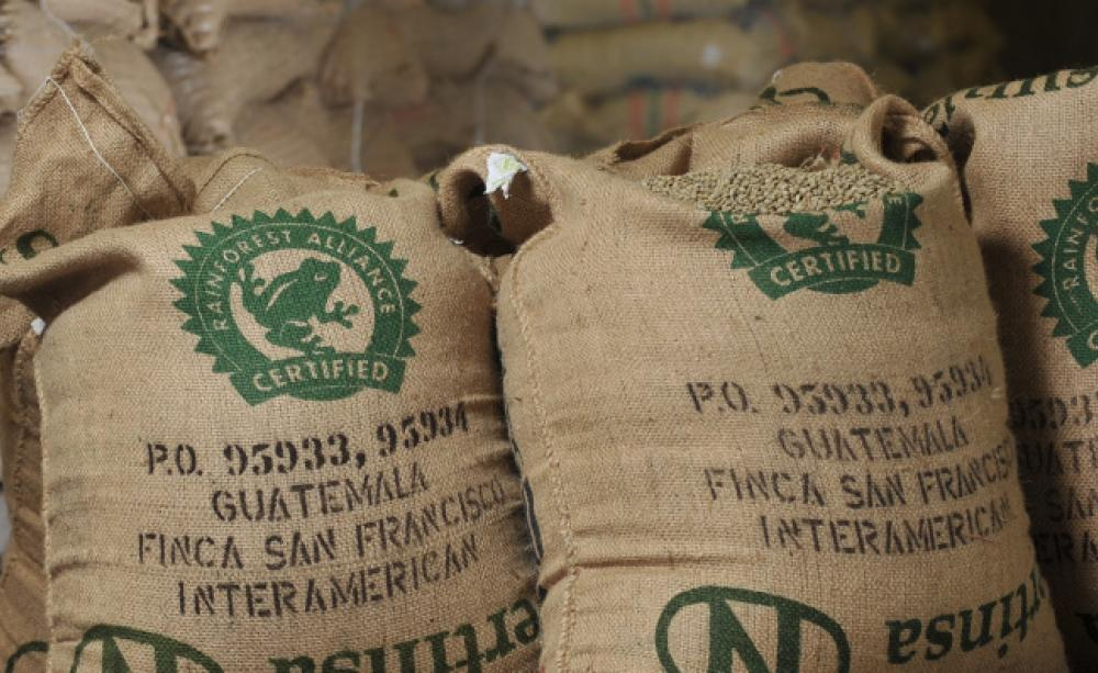 Rainforest Alliance good for farmers?