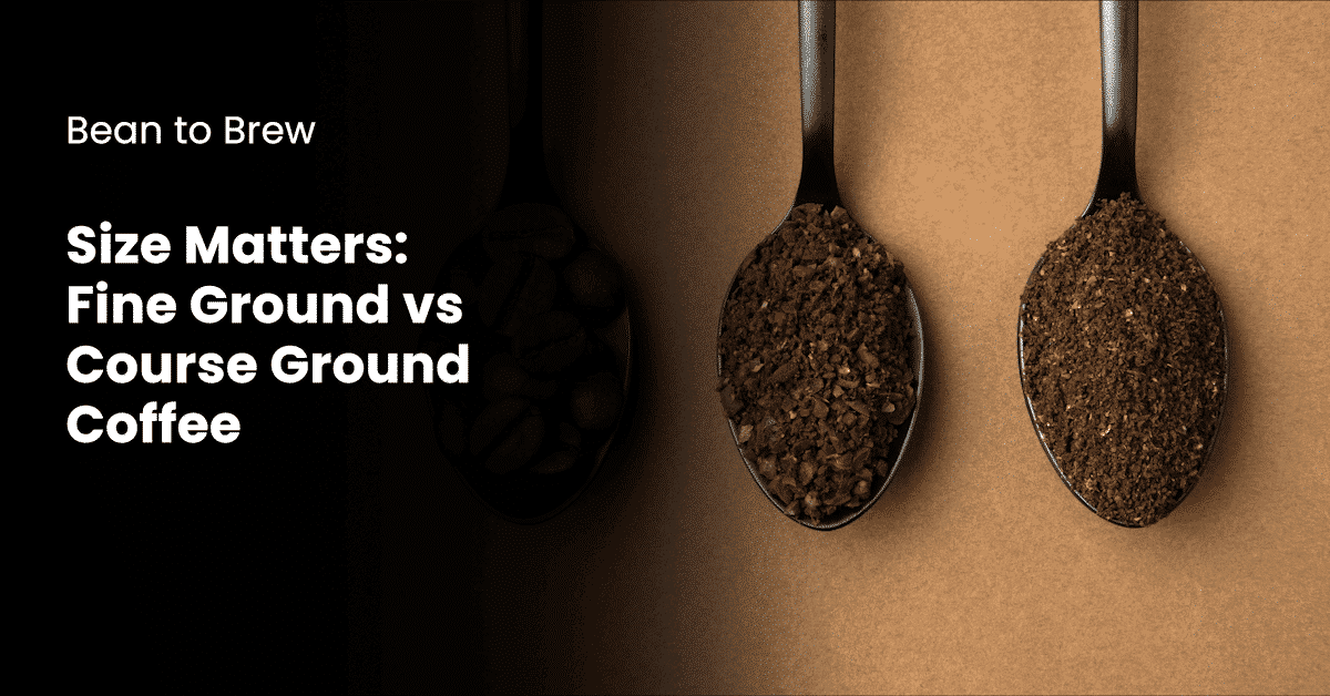 fine ground and coarse ground coffee on spoons